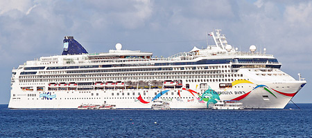 Amazing Tampa Cruise Port Transportation